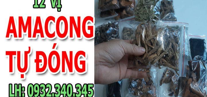 amacong tu dong 12 vi